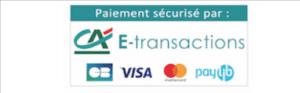 paiement securisé sur www.thisytravels.fr et le credit agricole comme partenaire