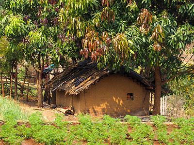 voyagez en orissa ou odisha visiter les campagne de l'est de l'inde avec l'agence de voyage thisy-travels www.thisytravels.fr