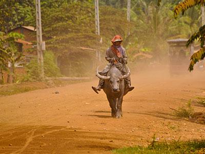 voyage au cambodge avec l'agence de voyage thisy-travels visite les temples bouddhistes photographier les paysans www.thisytravels.fr