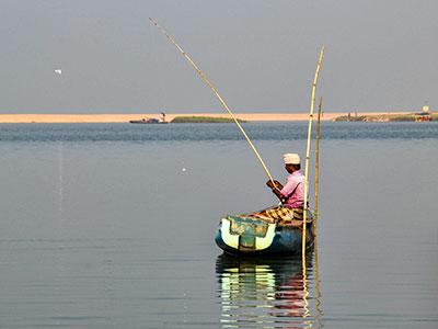 voyagez en inde du sud dans le kerala avec l'agence de voyage thisy-travels www.thisytravels.fr