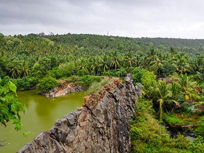 voyagez en inde du sud au travers des cultures de the et des epices dans le kerala avec l'agence de voyage thisy-travels www.thisytravels.fr